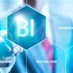 La Business intelligence per la PMI